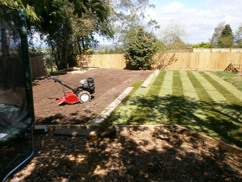 New lawn area